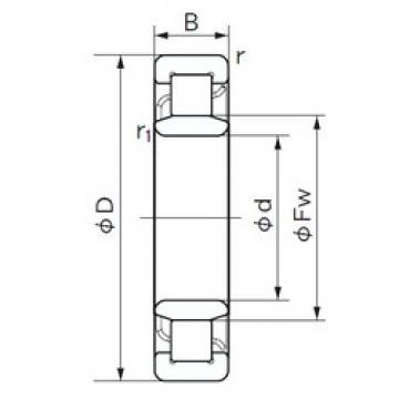 55 mm x 140 mm x 33 mm  NACHI NU 411 cylindrical roller bearings