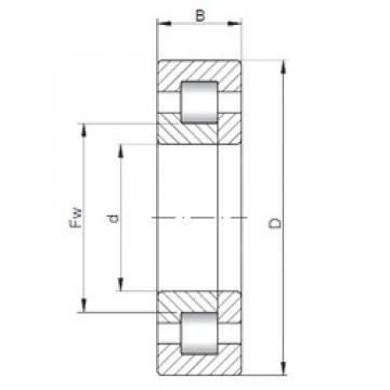 55 mm x 140 mm x 33 mm  ISO NUP411 cylindrical roller bearings