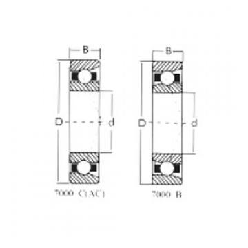 75 mm x 130 mm x 25 mm  Loyal 7215AC angular contact ball bearings
